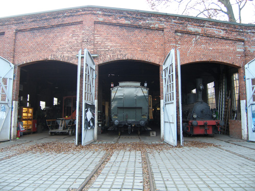 Sachsenwald im Herbst
